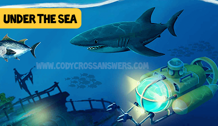 Cody Cross Under the Sea Answers